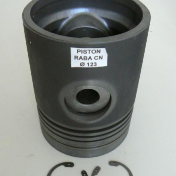 PISTON RABA 123mm.